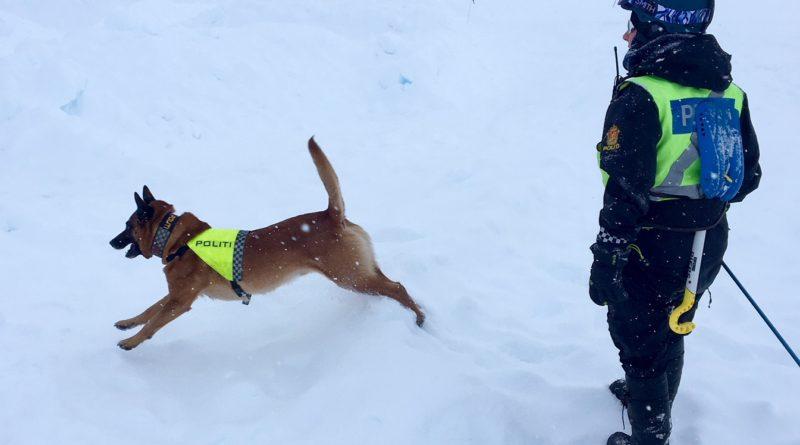 Hundeførernes rolle i redningstjeneste