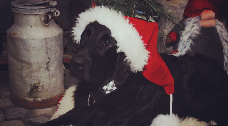 God jul og takk for 2019